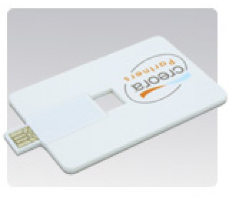 Card Shaped USB